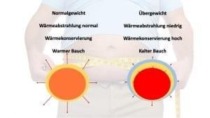 Übergewicht, Körpertemperatur - Ursache für Bluthochdruck