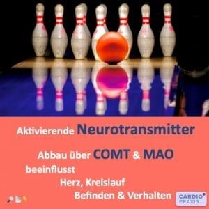 COMT & MAO - Blutdruck, Herzrasen, Angst, Depression